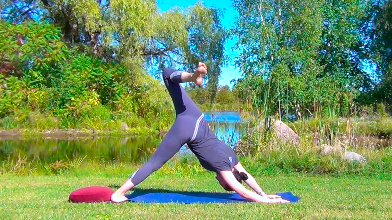 Vinyasa- Twists & Inner Thighs (Preview)